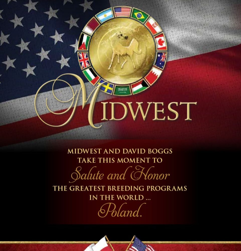 Midwest takes a moment to salute the greatest breeding programs in the world – Poland
