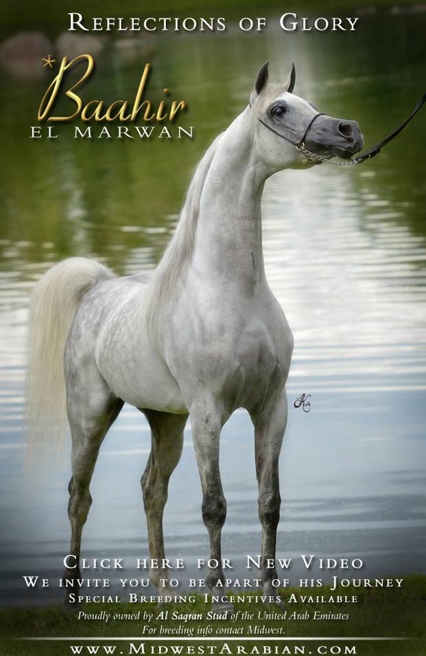 Reflections of Glory… *Baahir El Marwan