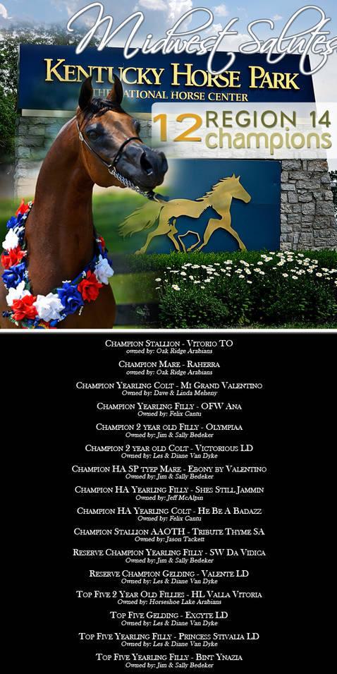 2011 Region 14 Championships