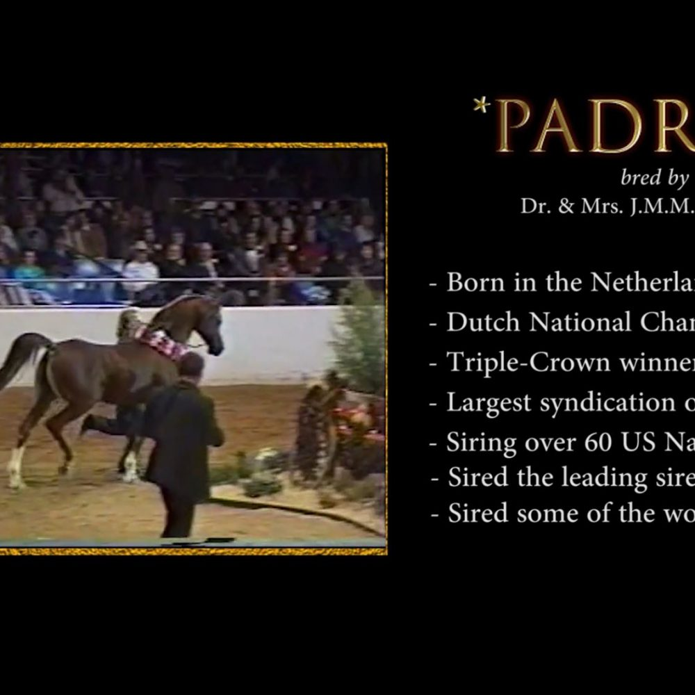 The Historic Padron and Bey Shah