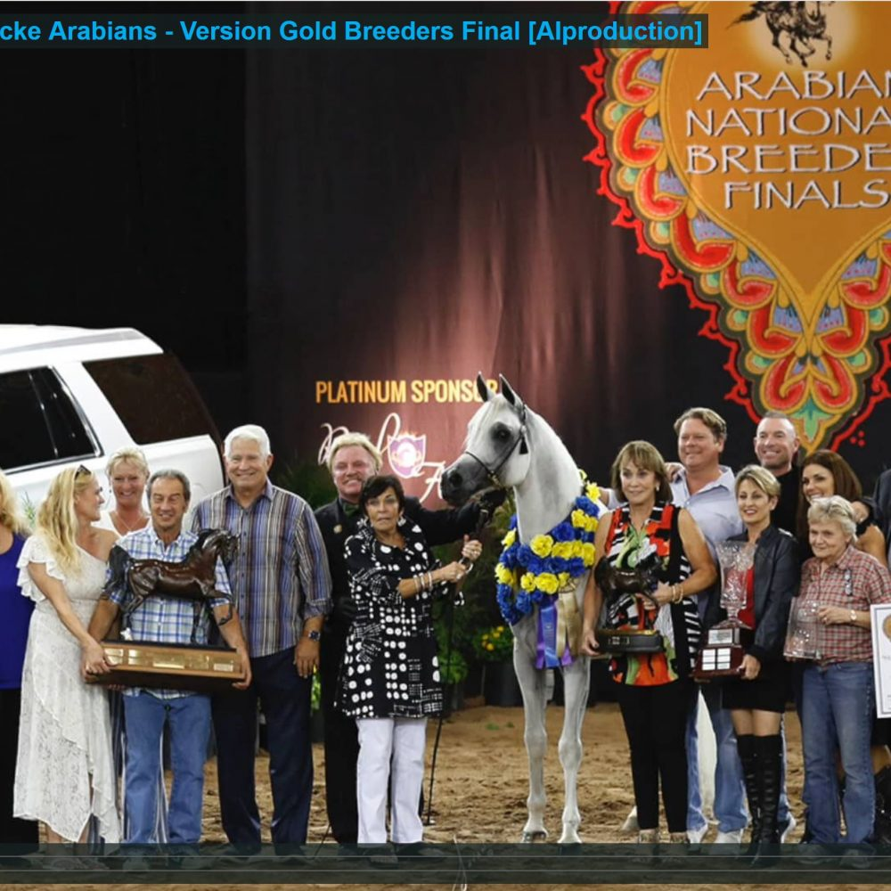 *Equiborn KA Arabian Breeders Finals 2019
