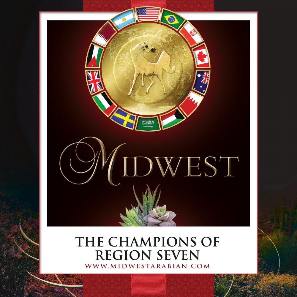 2021 The Champions of Region 7