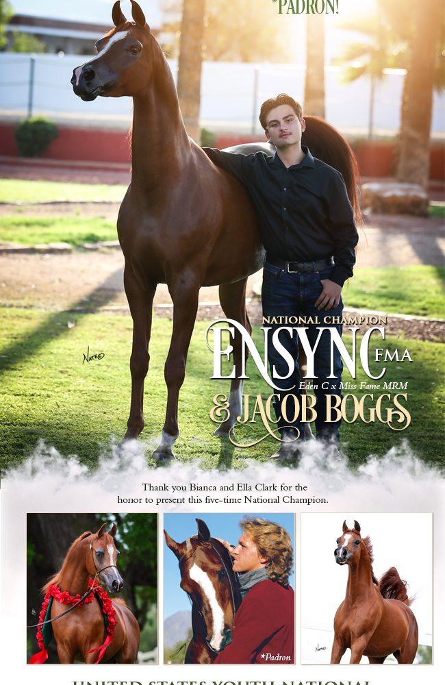 Ensync & Jacob Boggs – A Dream Team!